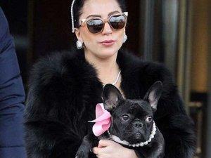 Lady Gaga... STİLİNİ PAYLAŞTIĞI BİRİ VAR!