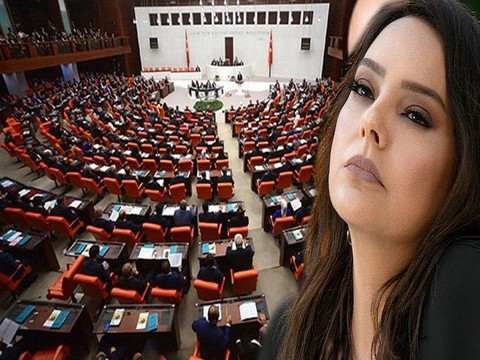 "Ebru Gündeş... TBMM'DE ""VIP"" TARTIŞMASI!.."