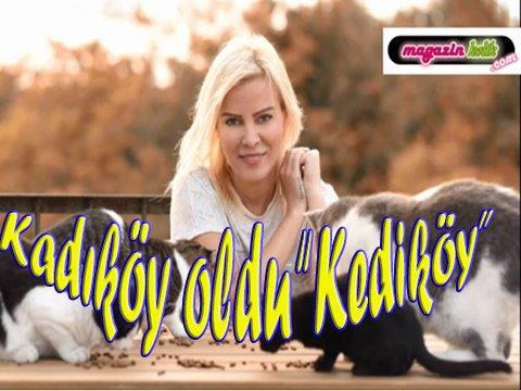 DÜNYANIN EN ŞANSLI KEDİLERİ, KADIKÖY'DE!