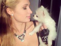 Paris Hilton... KKTC SÜRPRİZİ!..